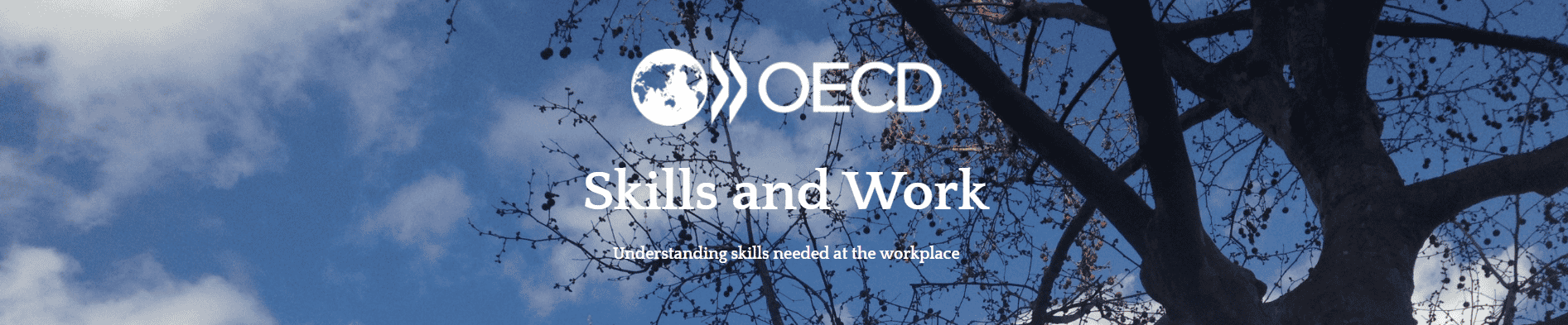 OECD Skills and Work Blog