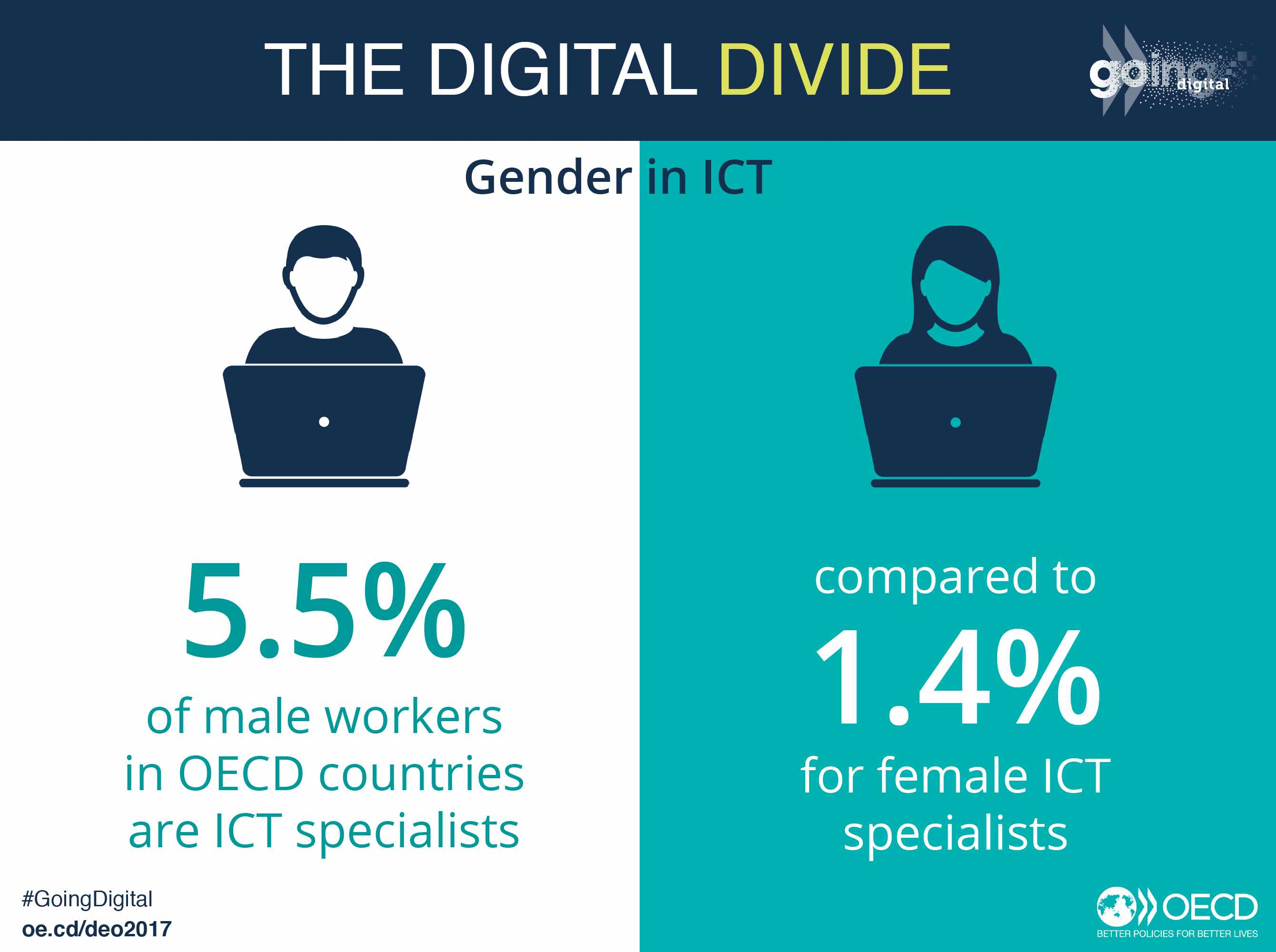 Gender divide in ICT