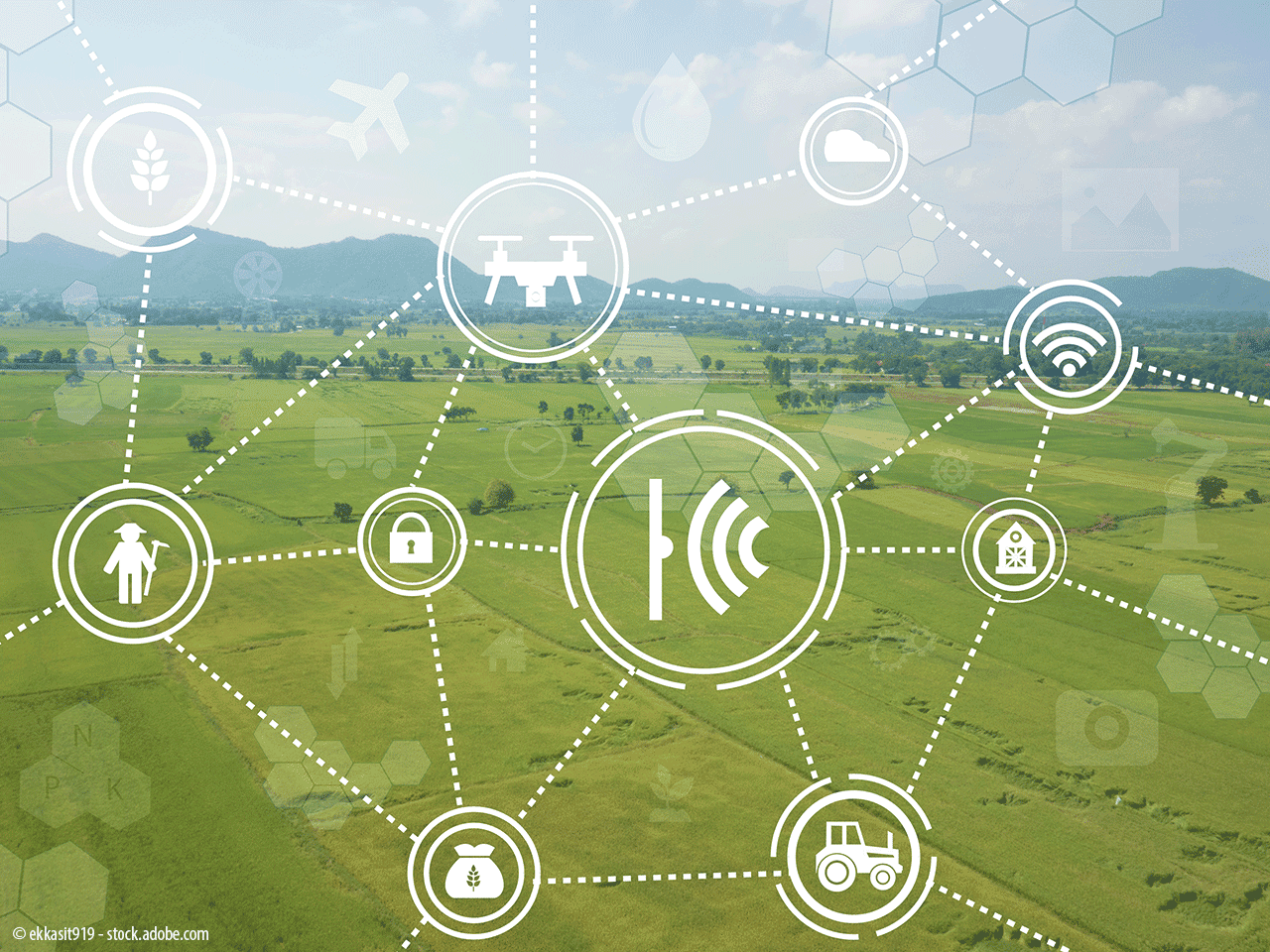 The Internet of Tractors? How digital technologies are impacting the way we grow and distribute food