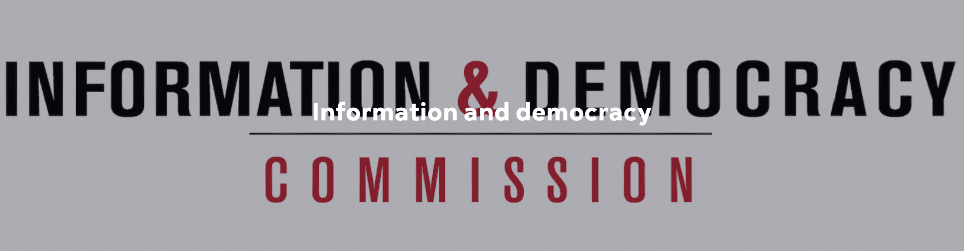 RSF Information and Democracy Commission